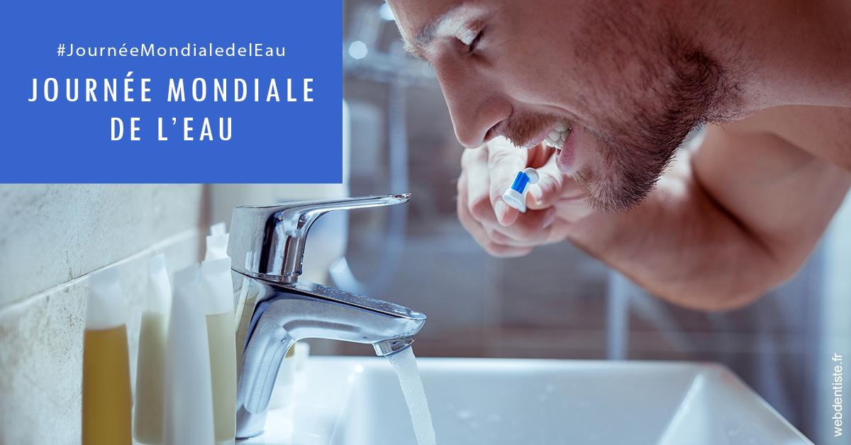 https://dr-thomas-valerie.chirurgiens-dentistes.fr/Journée de l'eau 2