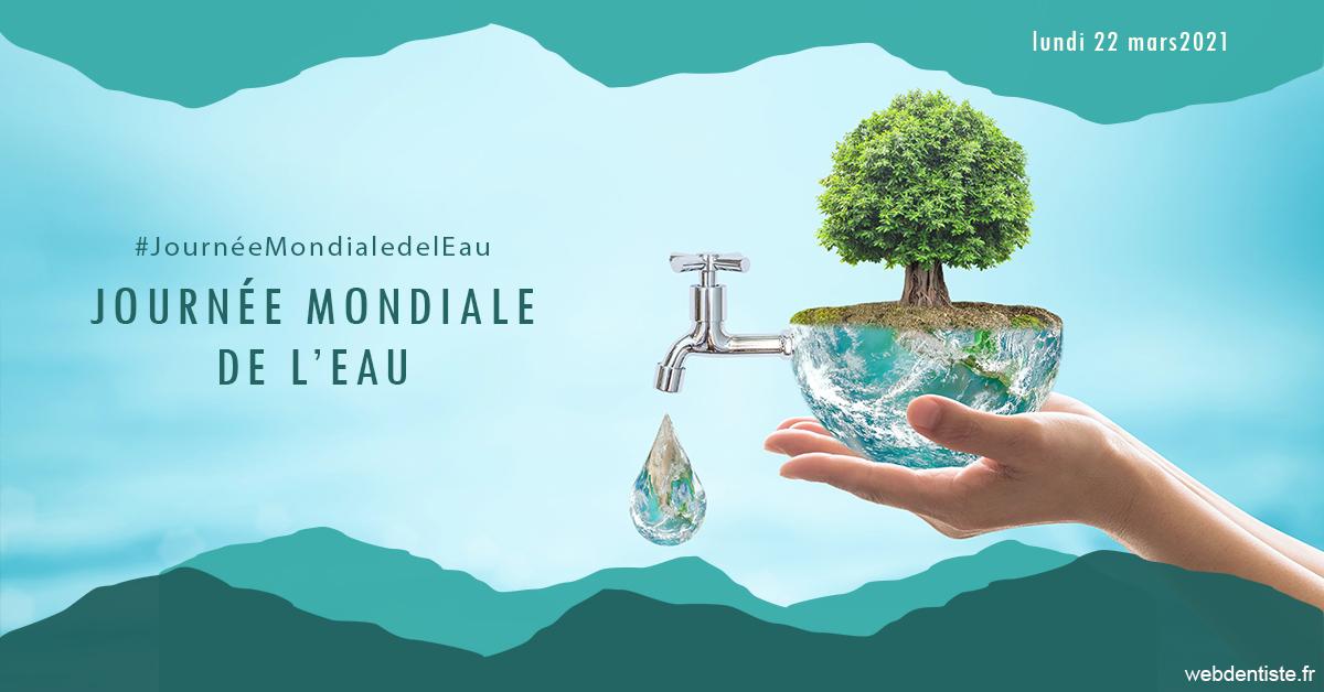 https://dr-thomas-valerie.chirurgiens-dentistes.fr/Journée de l'eau 1